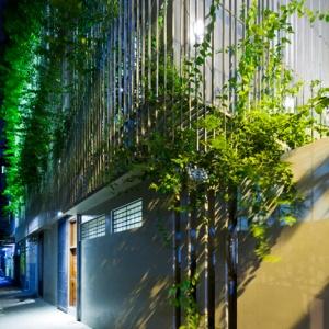 Green_Renovation_by_Vo_Trong_Nghia_dezeen_SQ_0